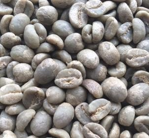 Raw (Unroasted) Green Arabica Coffee