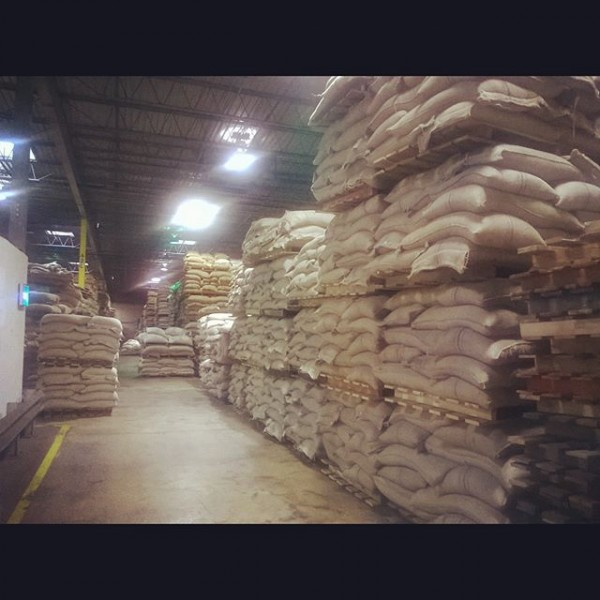 Green Coffee bags in Climate controlled warehousing/storage